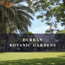 2011_DurbanBotanical